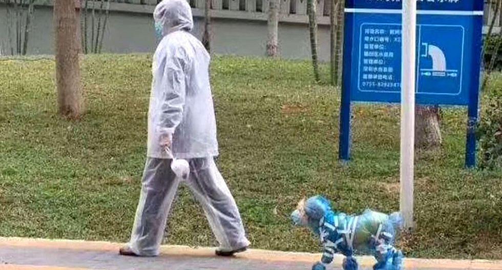 La imagen de perros con la punta de las patas protegida con bolsas de plástico han pasado a ser escenas cotidianas en el Beijing de los tiempos del COVID-19. (EFE).