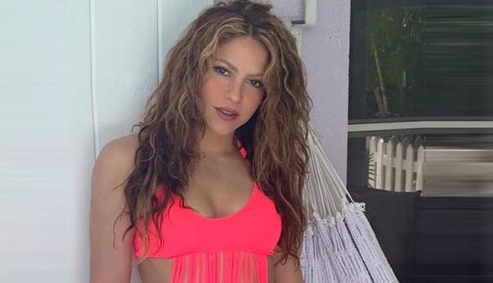 Shakira desata ola de críticas por fotografía nadando junto a una mantarraya. (Foto: @shakira)