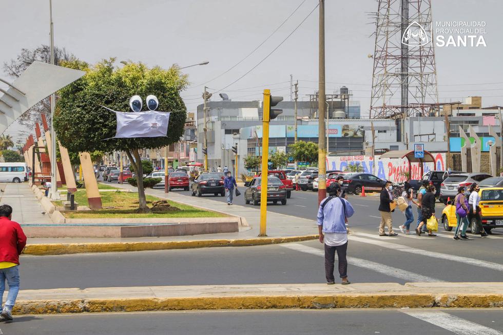 Chimbote: colocan mascarillas a los árboles para concientizar a la población (Foto: Municipalidad del Santa)
