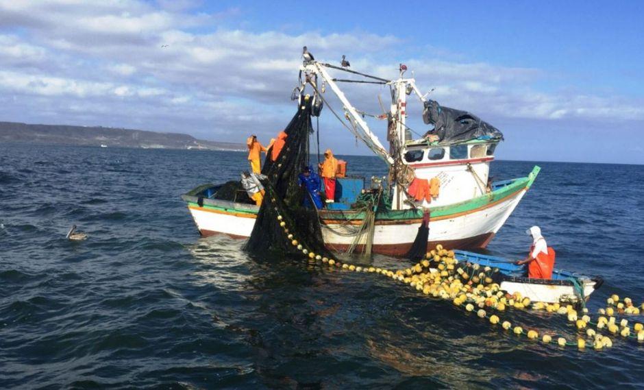 En total, unas 1,350 mujeres de 16 regiones fortalecieron sus capacidades técnicas en buenas prácticas pesqueras, durante el 2018. (ITP)