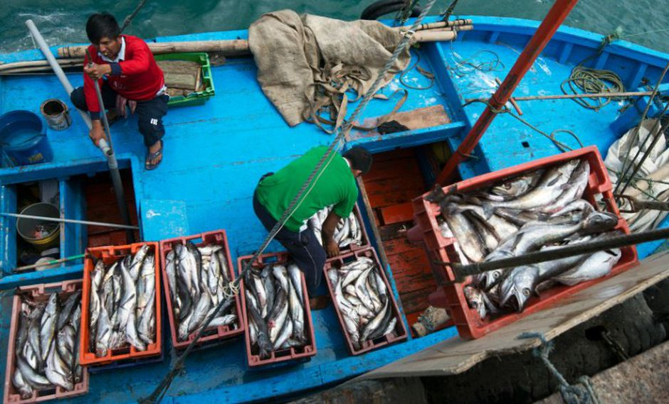 Gremio pesquero también consideró importante que se refuerce la lucha contra la corrupción. (Foto: AFP)