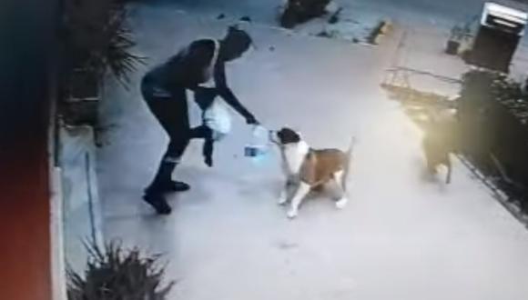 Imagen muestra el preciso momento en que el perro ataca a la menor, cuando esta transitaba junto a su madre. (Foto: captura de pantalla   YouTube   Animal's Health)