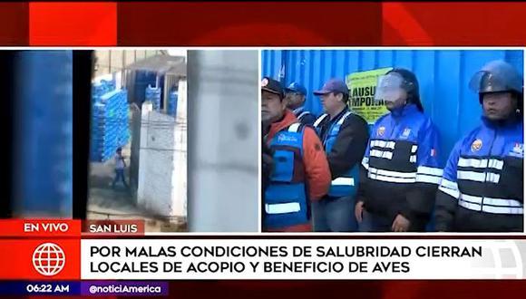 Fiscalización de San Luis clausuró de forma temporal cinco locales de acopio de aves por malas condiciones de salubridad (Captura: América Noticias)