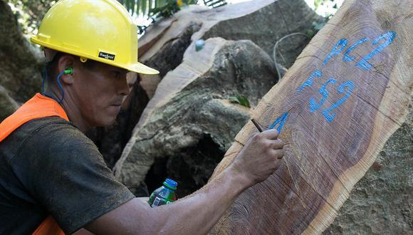 Sistema para acreditar origen legal de la madera estaría listo a inicios del 2021 y permitirá que los trámites de la administración forestal sean más eficientes. (Foto: Minagri)