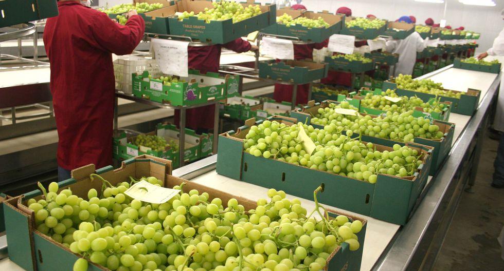 Las uvas son uno de los productos estrella. (Foto: Minagri)