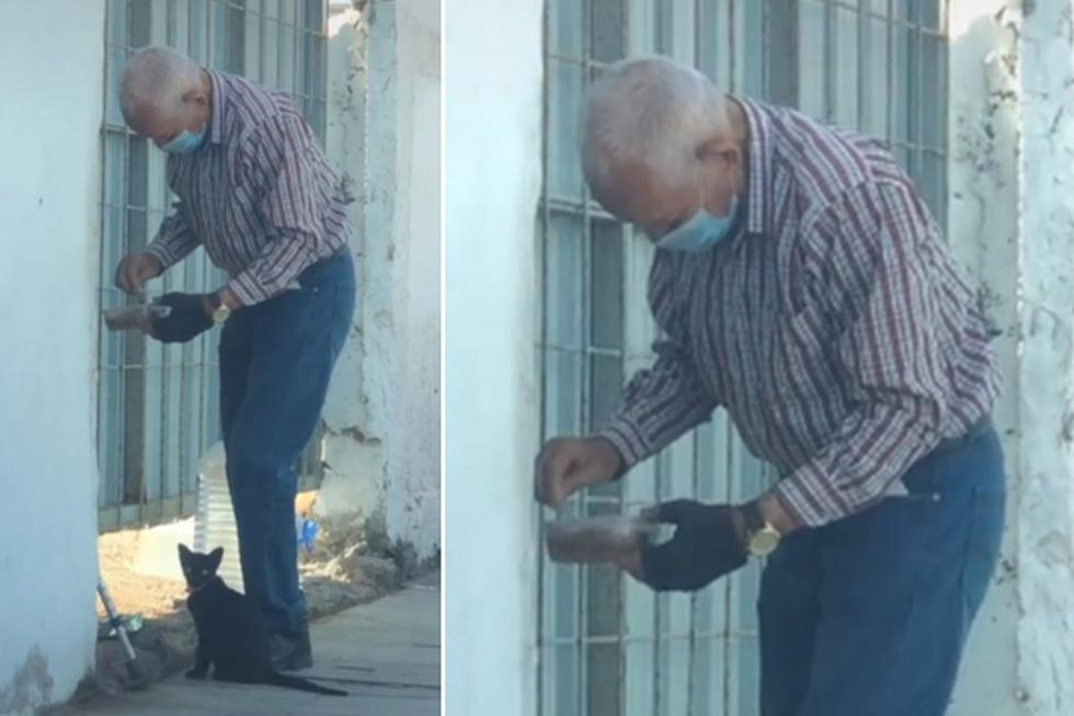 """Si bien se desconoce el nombre del hombre de la tercera edad que alimenta a una gatita callejera, sí se sabe que es de Canarias, España. (Foto: <u><b><a href=""""https://www.tiktok.com/@losivanes"""">losivanes</a></b></u> / TikTok)"""