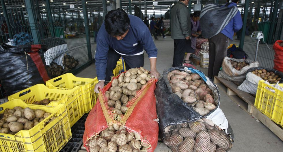 El precio del pollo en pie se encuentra hoy a S/ 4.35 por kilo en el mercado mayorista de Lima. (Foto: GEC)