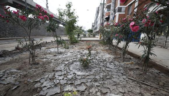 Sedapal envió especialistas a la zona para tomar muestras del agua. (Foto: Grupo El Comercio)