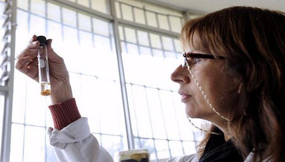 Concytec: Cienciactiva ofrece becas de maestrías en universidades peruanas. (@ConcytecPeru)