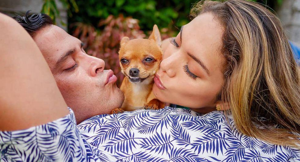 Hércules es el chihuahua que adoptó la pareja al iniciar su relación. (Instagram)