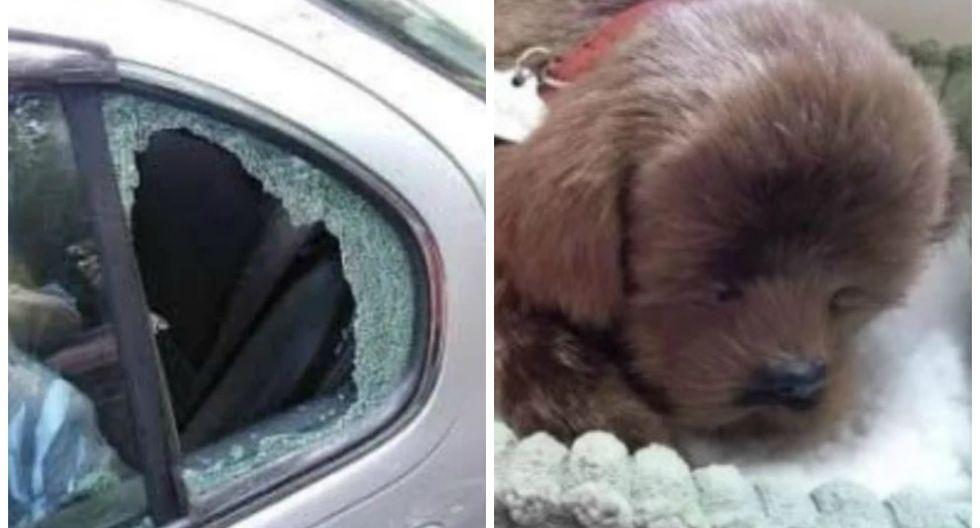 Se viralizó en Facebook la historia de un usuario inglés que expresó toda su molestia tras descubrir que una de las ventanas de su auto había sido destrozada. (Foto: Facebook/Spotted Weston-super-mare)
