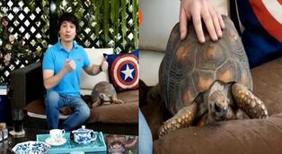 Bruno Pinasco cuenta la historia de su tortuga Maca