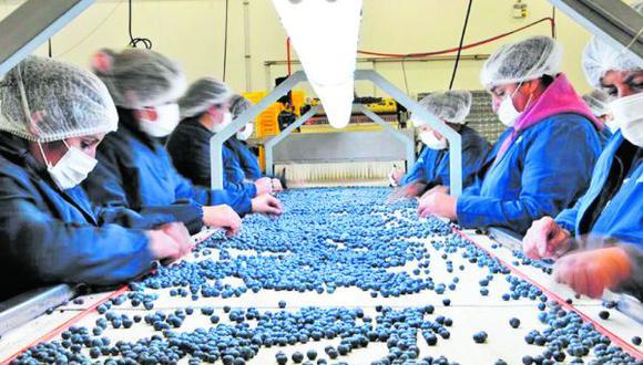 """""""Siempre el norte tiene mejores expectativas porque la agroindustria genera mucho anclaje de actividades económicas"""", comentó Jorge Luis Cáceres."""