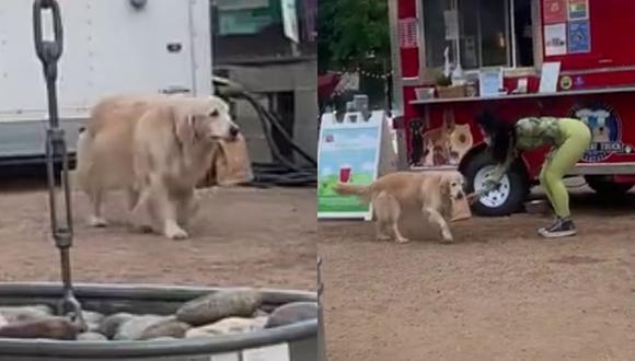 Un video viral muestra a una adorable perrita entregando pedidos de comida para perros en un food truck.   Crédito: ViralHog / YouTube