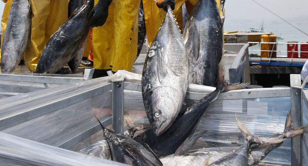 La Dirección General de Supervisión, Fiscalización y Sanción del Despacho Viceministerial de Pesca y Acuicultura verificará el cumplimiento de la entrega. (Foto: GEC)