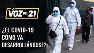 ¿Cómo va desarrollándose el COVID-19 en el Perú?