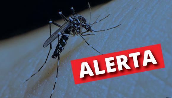 Más de 4 mil afectados y 12 fallecidos por dengue a nivel nacional. (Composición)