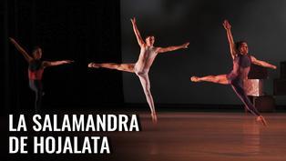 """ENSB y Perú21 presentan:  """"La Salamandra de Hojalata"""""""