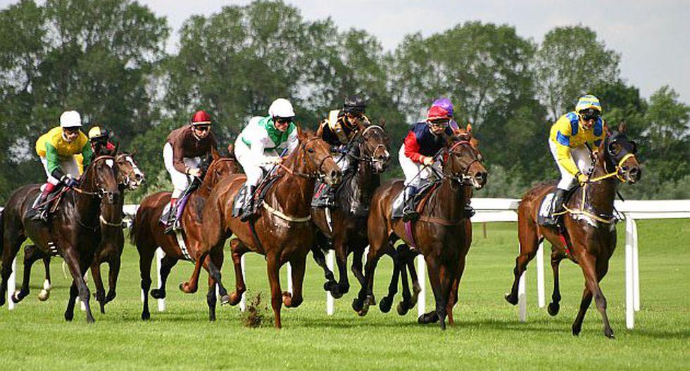 El cártel invirtió millones en caballos. (Internet)
