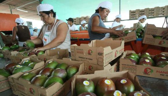EN EL MUNDO. La creciente demanda elevó el volumen de las exportaciones a US$4,532 millones. (USI)