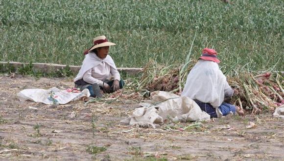 Bono será otorgado a pequeños agricultores en los próximos 60 días (Perú21)