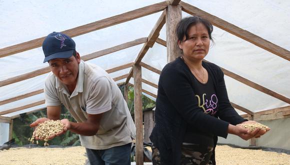 Clomalda Salvador y Primitivo Nolasco, ganadores del concurso de Cafés Especiales 2020 del Valle del Monzón, están felices con su producción. El geisha que ofrecen es excepcional. (Foto: Aura Guío)