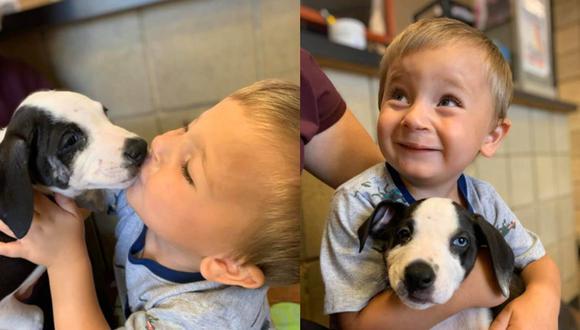 El pequeño Bentley quedó encantando con la tierna Lacey, tal y como quedó registrado en una serie de fotografías.| Foto: Jackson County Animal Shelter - Michigan/Facebook