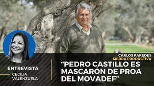 """Carlos Paredes: """"Pedro Castillo es mascarón de proa del Movadef"""""""
