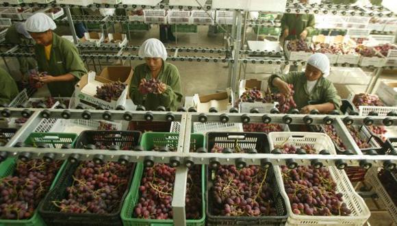 La medida afectaría el empleo en el sector. (USI)
