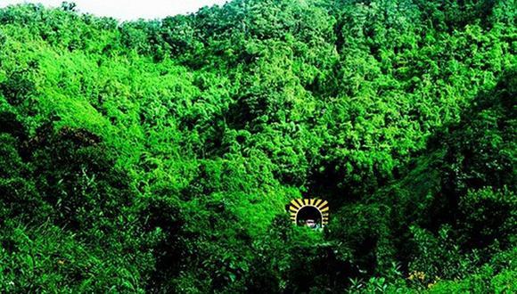 El Área de Conservación Regional Bosque Montano de Carpish abarca varios distritos. (Foto: Inforegion)