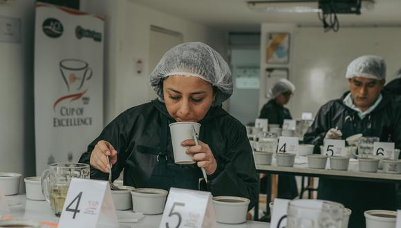 La etapa internacional consiste en el envío de muestras de estos 36 cafés a ocho laboratorios especializados ubicados en Japón, China, Corea del Sur, Australia, Estados Unidos, Inglaterra y Noruega