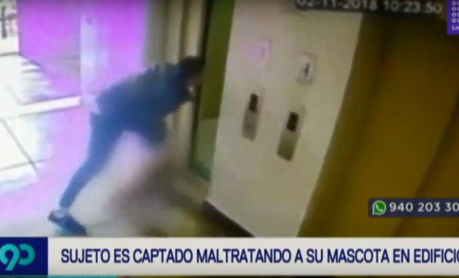 La mascota fue rescatada por una activista y por la Policía Nacional. El dueño será denunciado. (Latina)