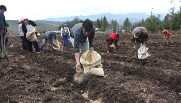 El Minagri busca fortalecer la agricultura familiar. (Foto: GEC)