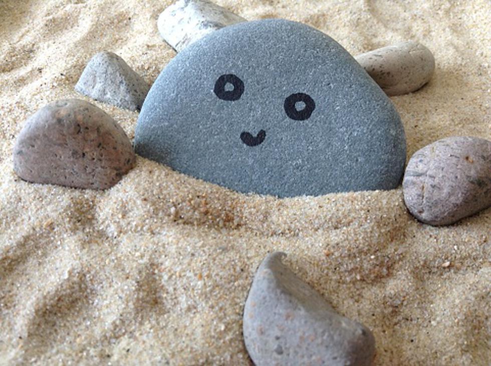 Gary Dahl, un 'redactor publicitario independiente', tuvo la idea millonaria de vender rocas como si fueran mascotas. (Getty)