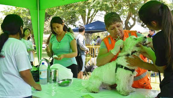 Se realizará en el Parque Santos Dumont en Lince a partir de las 09:00 a.m. hasta las 4:00 p.m., informaron los encargados del evento. (Foto: Facebook Fundación Rayito)
