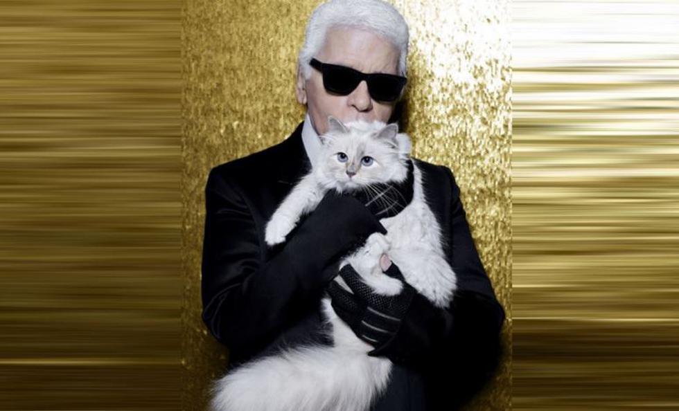 'Choupette', la gata mimada de Karl Lagerfeld que heredará su fortuna. (Facebook)