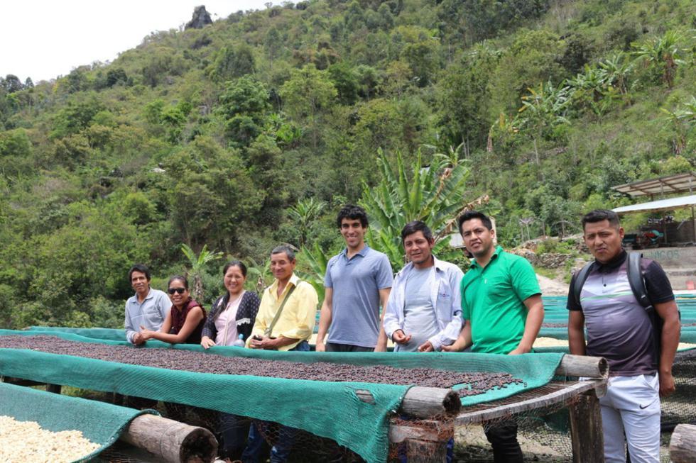 Becas para fortalecer conocimientos agrícolas (Foto: Andina)