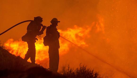 La joven hacía malabares con fuego para un video de Tik Tok cuando uno de los objetos arrojados contactó con un árbol, propagándose el fuego sin que fuera posible sofocar las llamas. (Foto: Referencial/Pixabay)