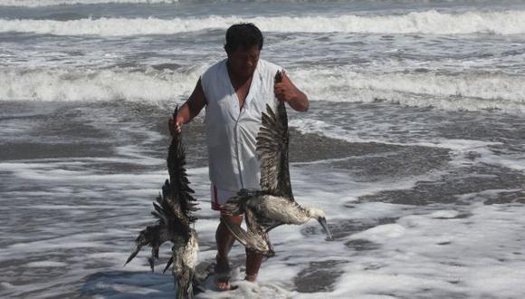 Mueren por mar cálido. (Fabiola Valle)