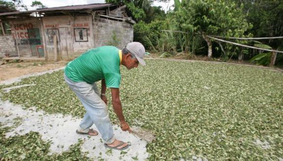 Alianza con cocaleros. (Perú21)