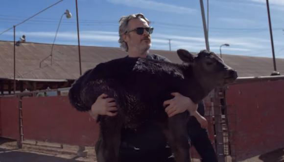 Joaquin Phoenix salvó a una vaca y su becerro de morir en un matadero. (Captura de video)
