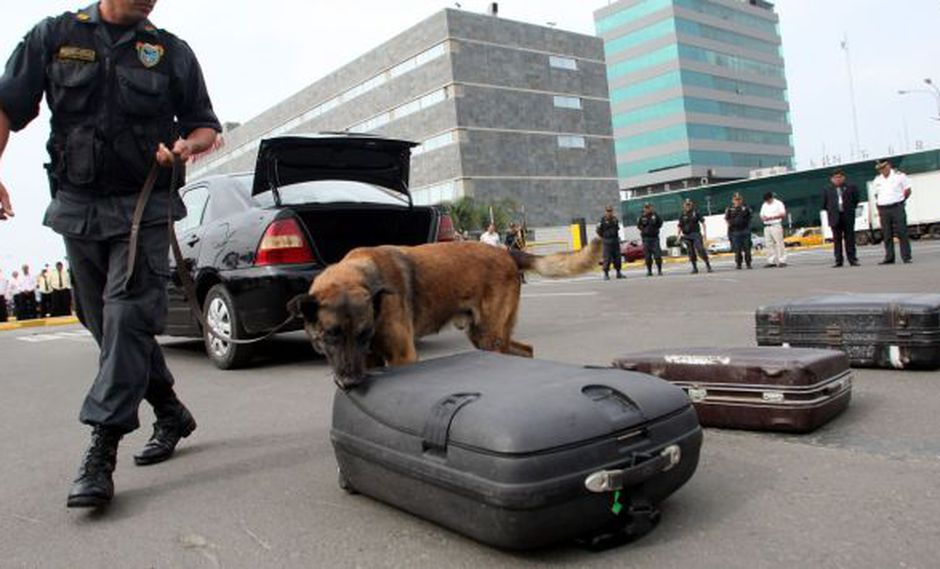Dirandro detuvo a 65 burriers e incautó 236 kilos de droga en el aeropuerto. (Andina)