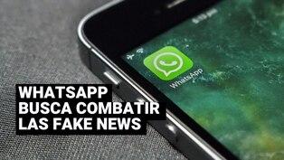 Whatsapp: ¿para qué sirve la lupa que sale al lado de tus mensajes?