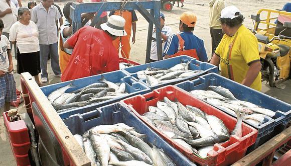 Pescadores formalizados
