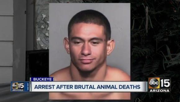Las autoridades afirmaron que la mujer confrontó a Vega Meza y encontró al perro decapitado dentro de la caja. (Foto: Captura de video)