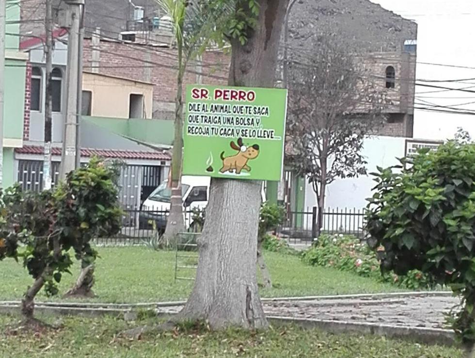 Vecina denuncia mensajes ofensivos contra dueños de perros en Los Olivos. (Carmen Cortez)