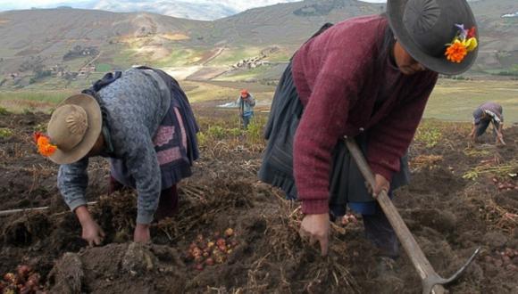 Agro Rural tiene como ámbito de intervención a las zonas rurales en el ámbito agrario en territorios de menor grado de desarrollo económico. (Foto: Difusión)