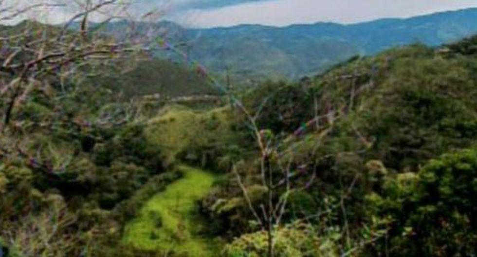 El accidente ocurrió en la vía Rodríguez de Mendoza, en la región Amazonas. (Foto: TVO Amazonas)