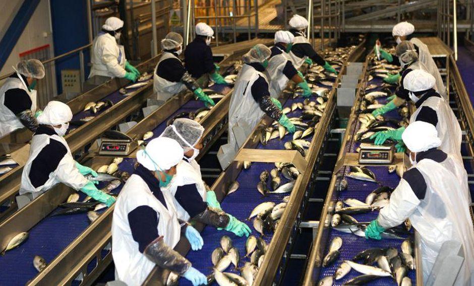 La industria de productos pesqueros creció 152.8%. (Foto: Andina)