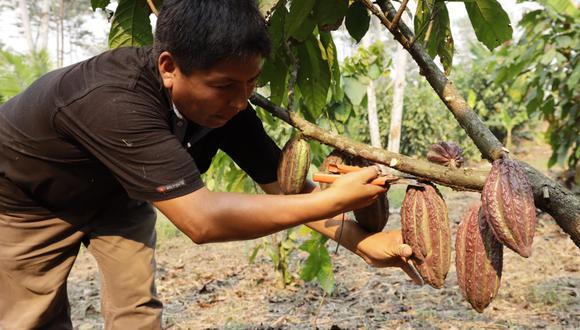 El Salón del Cacao y Chocolate 2021 también será escenario del XI Encuentro Nacional de Mujeres Productoras de Cacao.